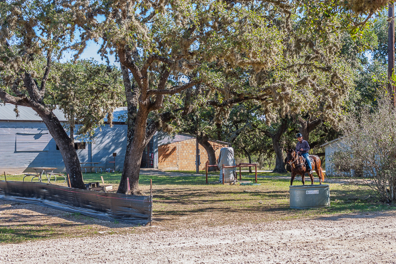 Horseback riding is popular at Hill Country State Natural Area.