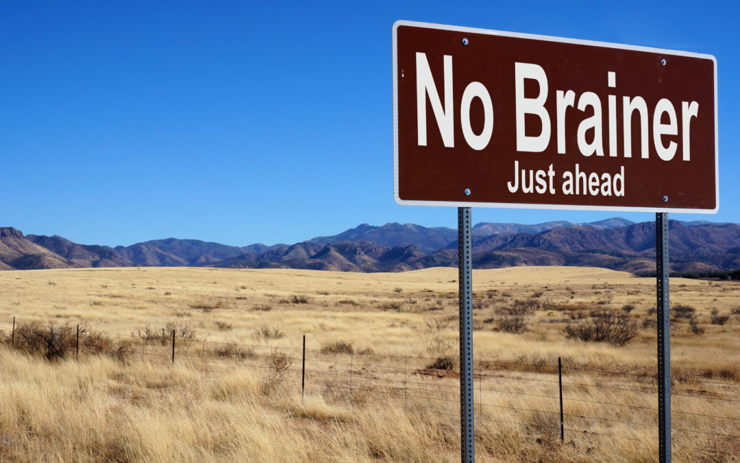 Roadside sign that says No Brainer
