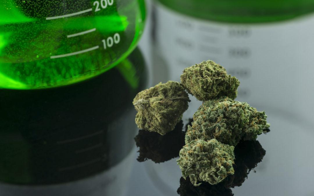 Oklahoma medical marijuana buds next to a laboratory glass