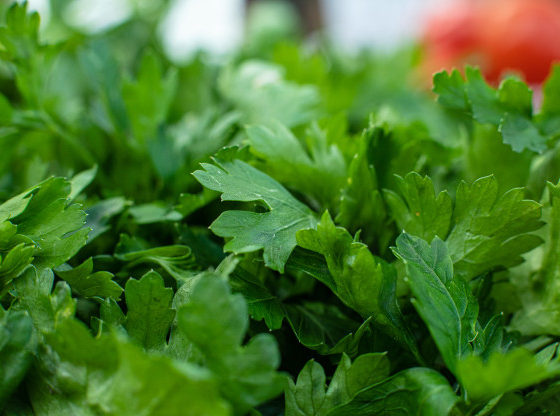 we have packaging for parsley