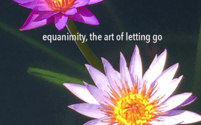 Equanimity, the art of letting go