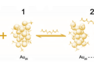Ligand Passivated Gold Nanoparticles