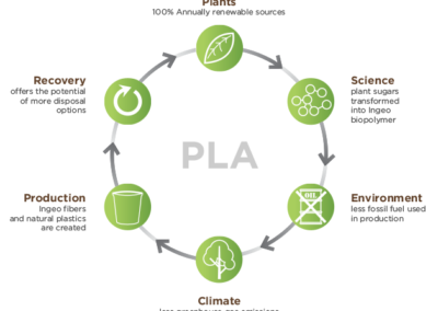 Improved Industrial Production of Isotactic Polylactides (PLA)