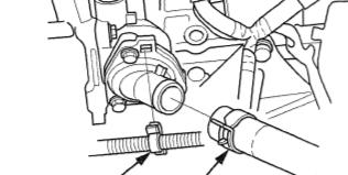 lower rad hose