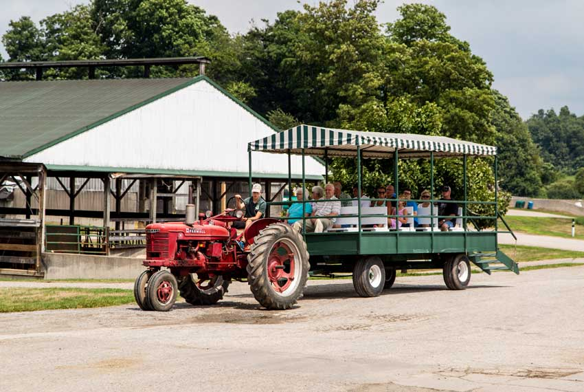 country dairy farm tour in new era michigan