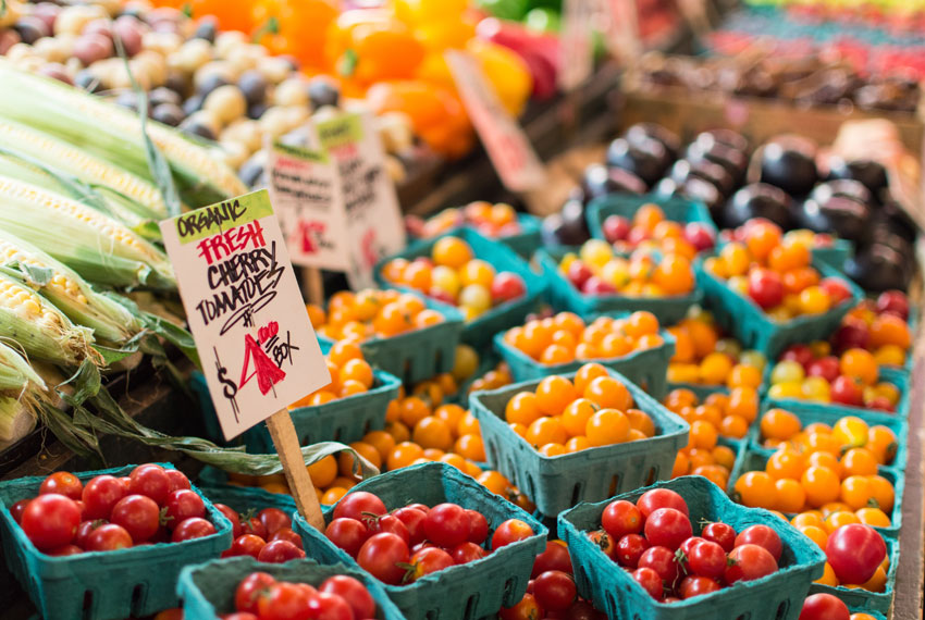 new era christian reformed church farmers market