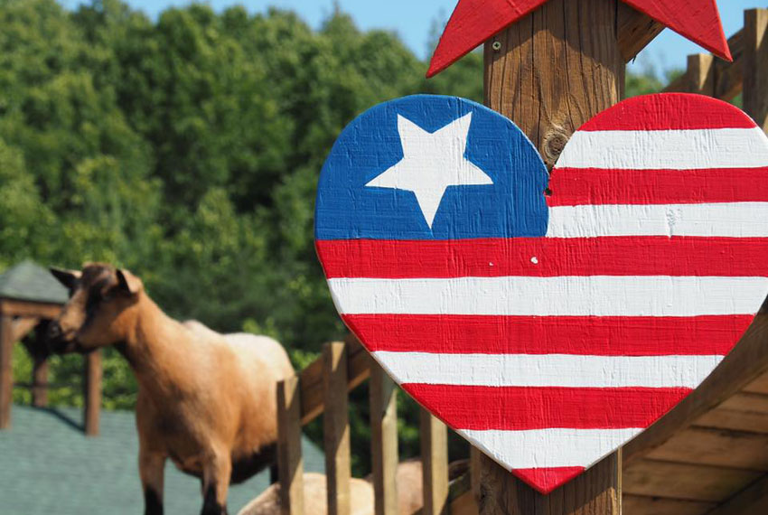 heart american flag sign at lewis farms in new era michigan