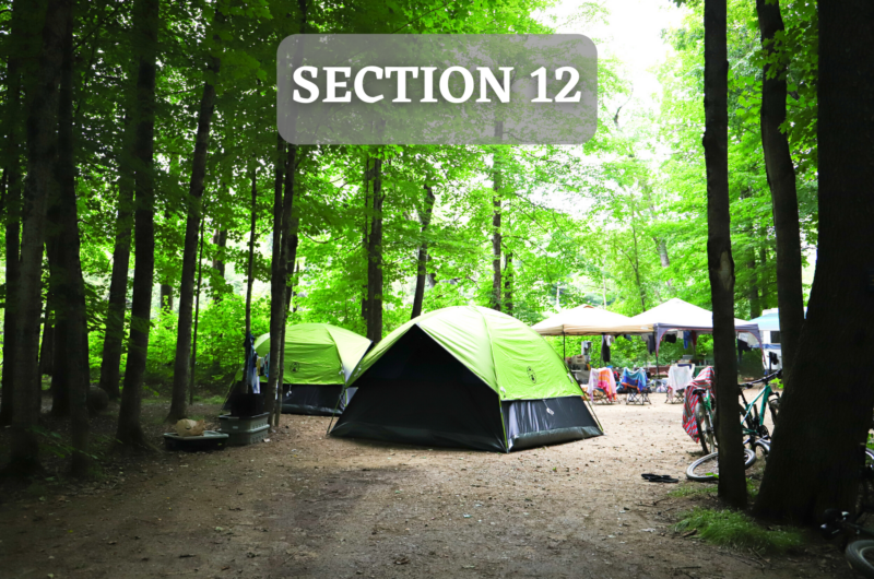 Section12