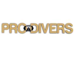 prodivers