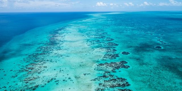 Belize_reefweek_2-big (640x320)