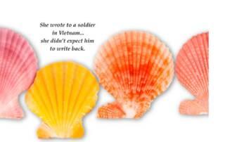Nicky Webber Author 2