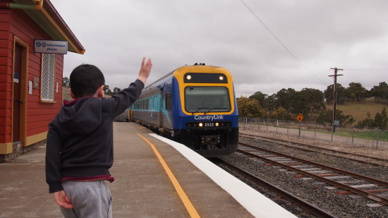 The train arrives at the Walcha Road station
