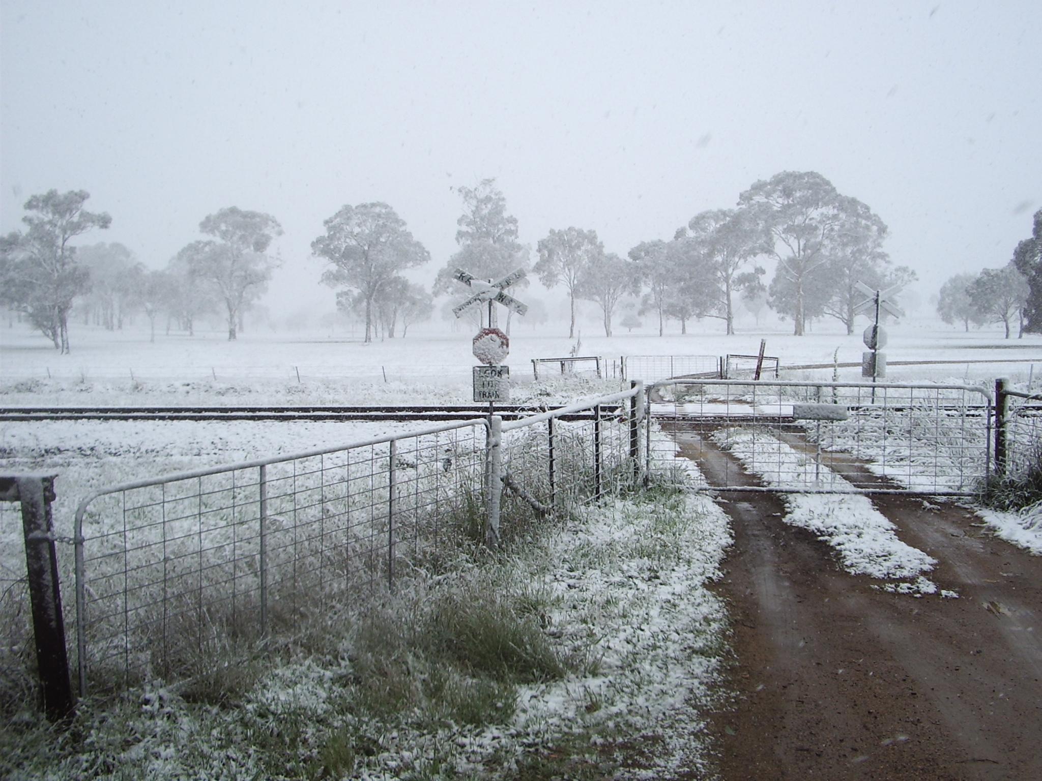 Rail crossing in snow