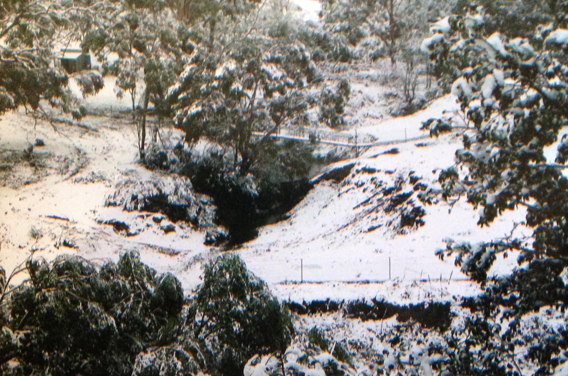 View from Back Verandah Snowing