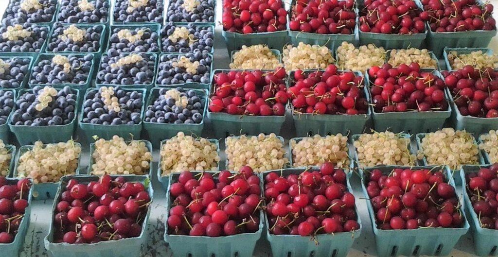 US Flag in berries