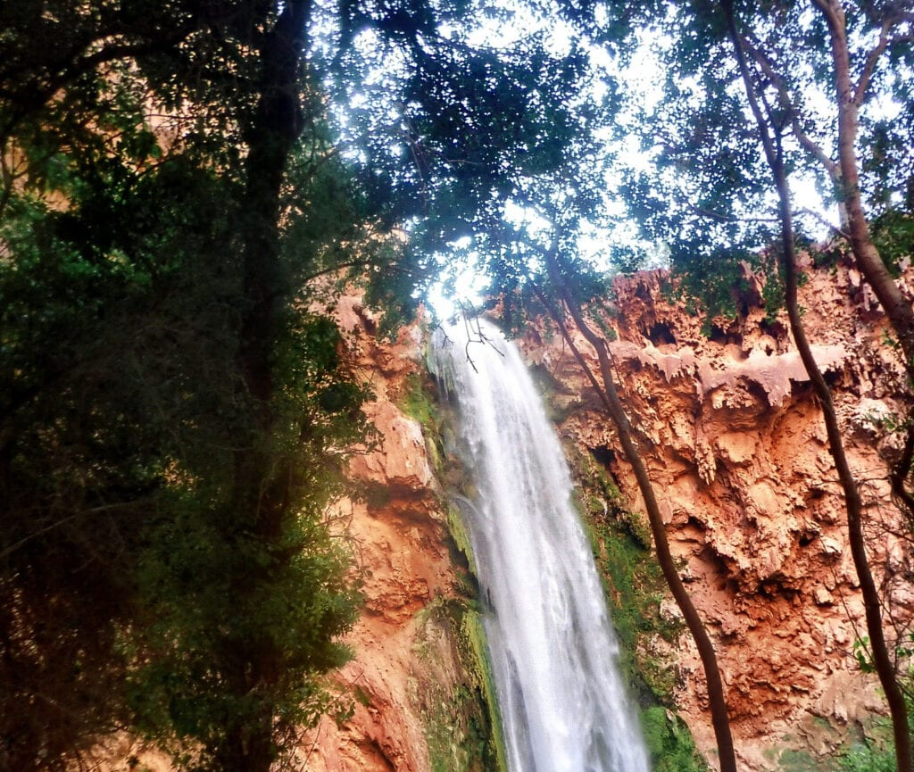 Havasu Falls waterfall against the red cliffs with trees The Grand Canyon, Arizona