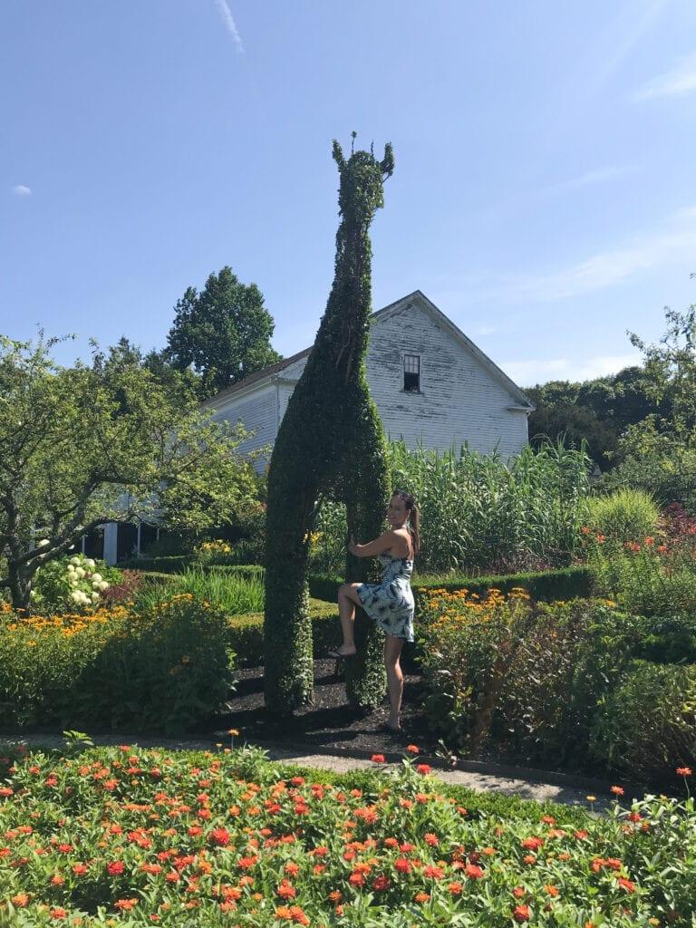 girl hugging giraffe-shaped bush at a topiary garden