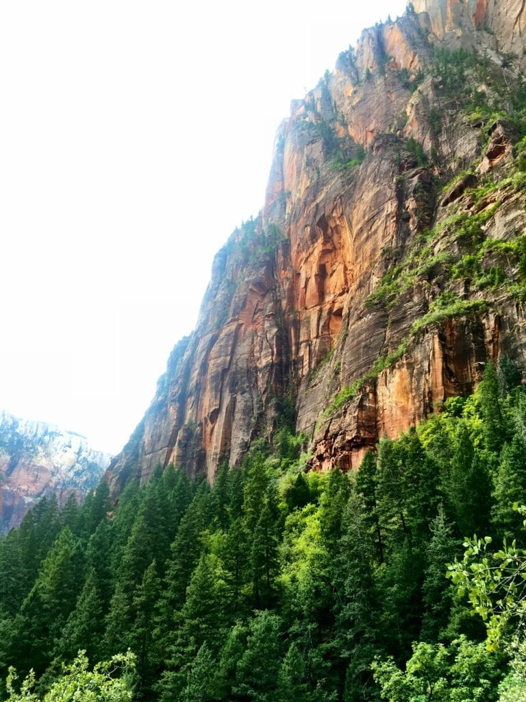 zion national park mountains
