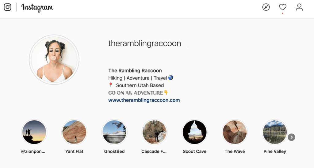 TheRamblingRaccoon Instagram
