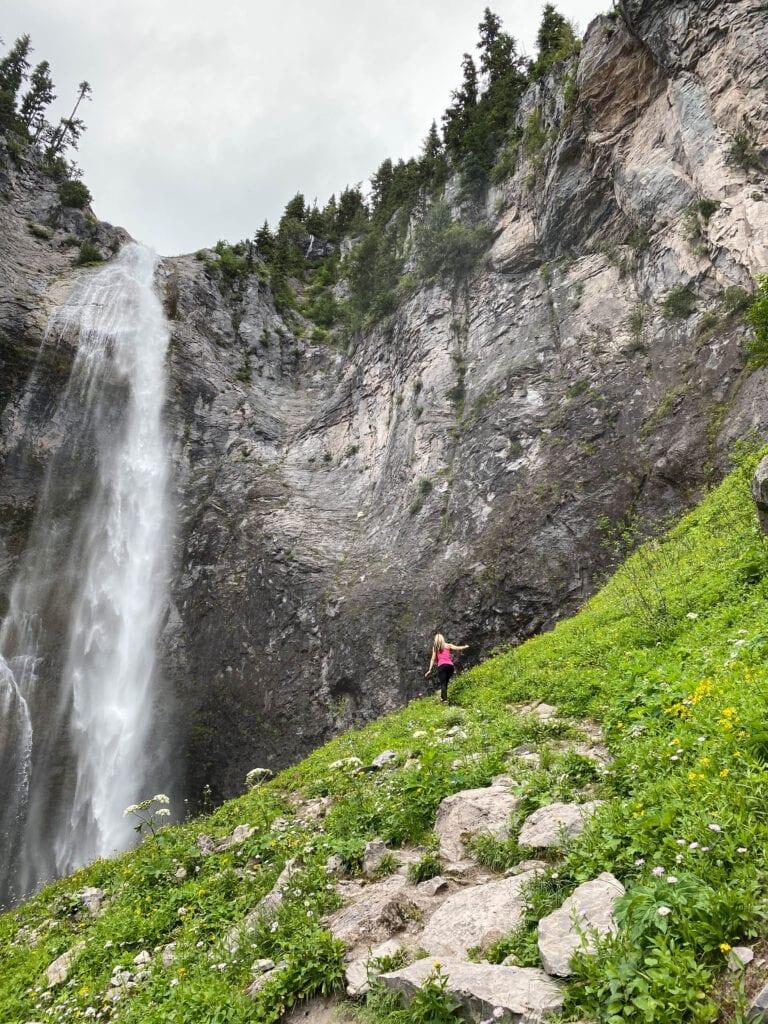 Mount Rainier National Park Washington