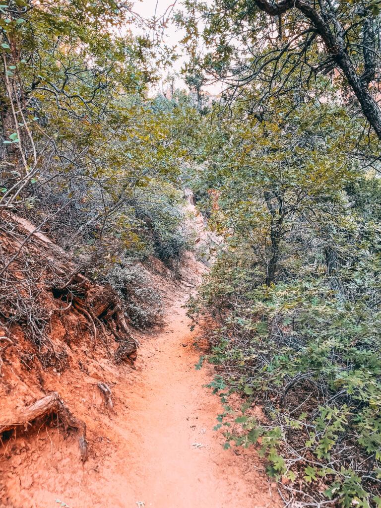 Water Canyon Trail Utah