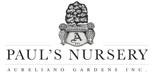 Pauls Nursery