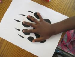 bear paw, child, Nature Detectives