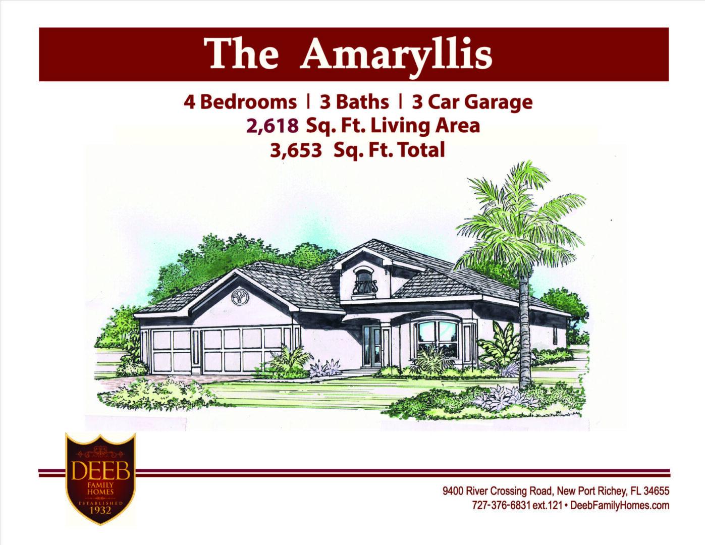 Amaryllis 2618 Elevation
