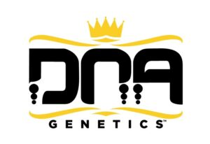 DNA Genetics is an upscale brand, with proprietary cultivars.