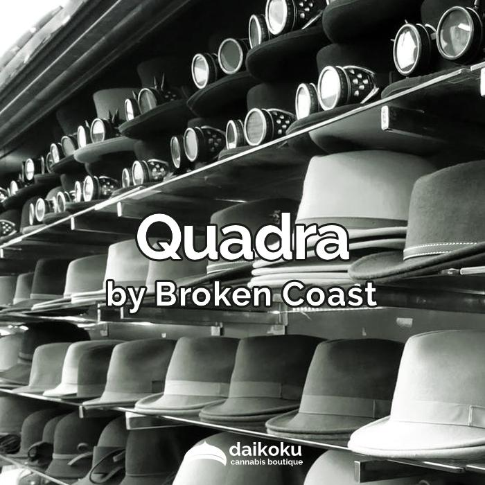 02/04/20: Quadra byBroken Coast | A variant of Headstash.