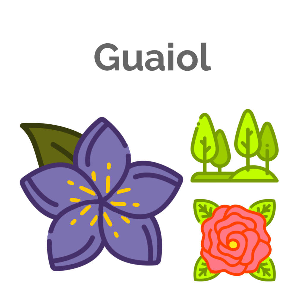 Guaiol is the secondary terpene in Great White Shark