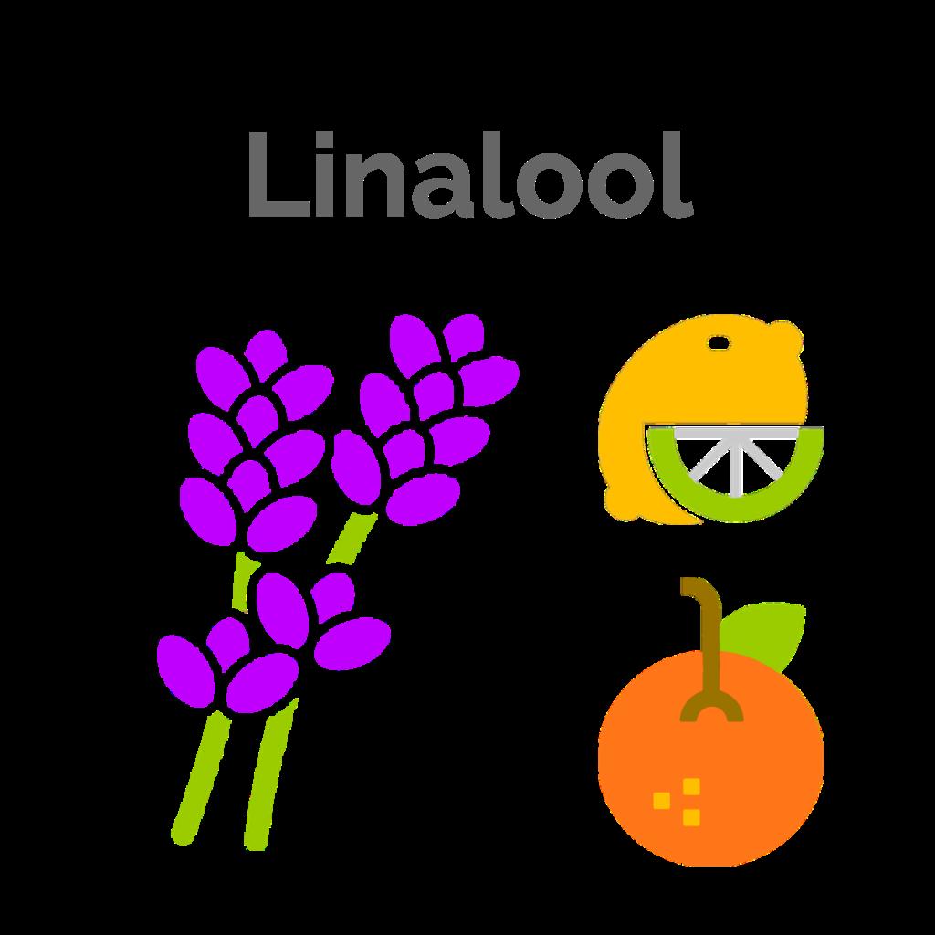 Linalool is the tertiary terpene found in Pre-98 Bubba Kush