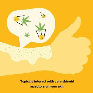 Topicals interact with cannabinoid receptors on your skin