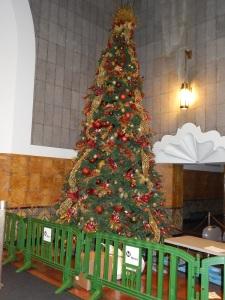 LAUS Christmas tree 2014 Braymer photo