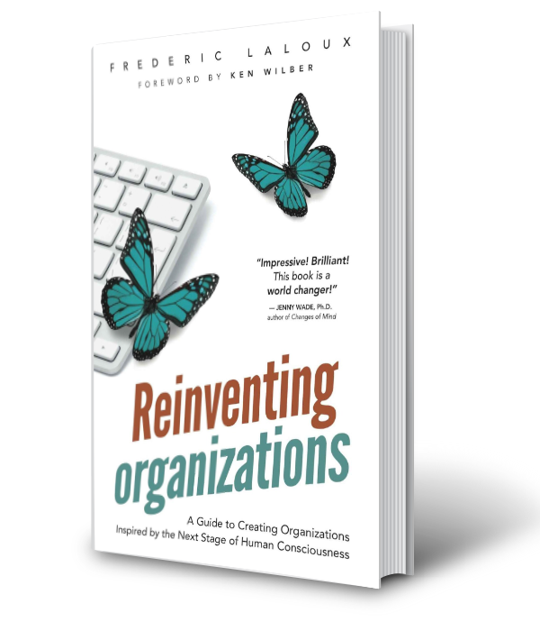 Reinventing Orgs - Next Stage Organisations