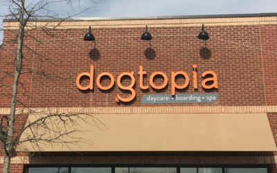 Dogtopia – Frederick, MD
