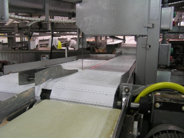 Belt Conveyor Saw
