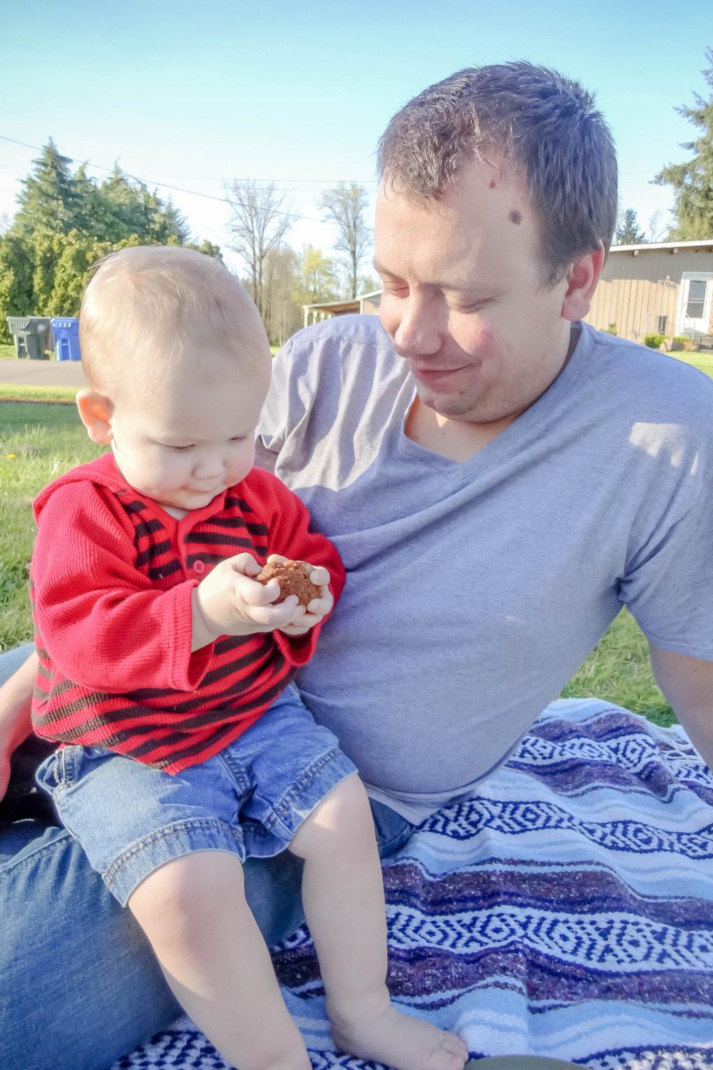 Toddler boy sitting on dad's lap on a picnic blanket holding a muffin