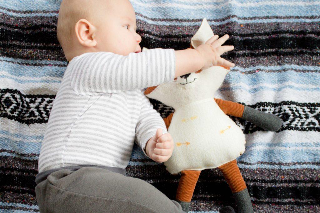 The cutest baby wrestling a fox!