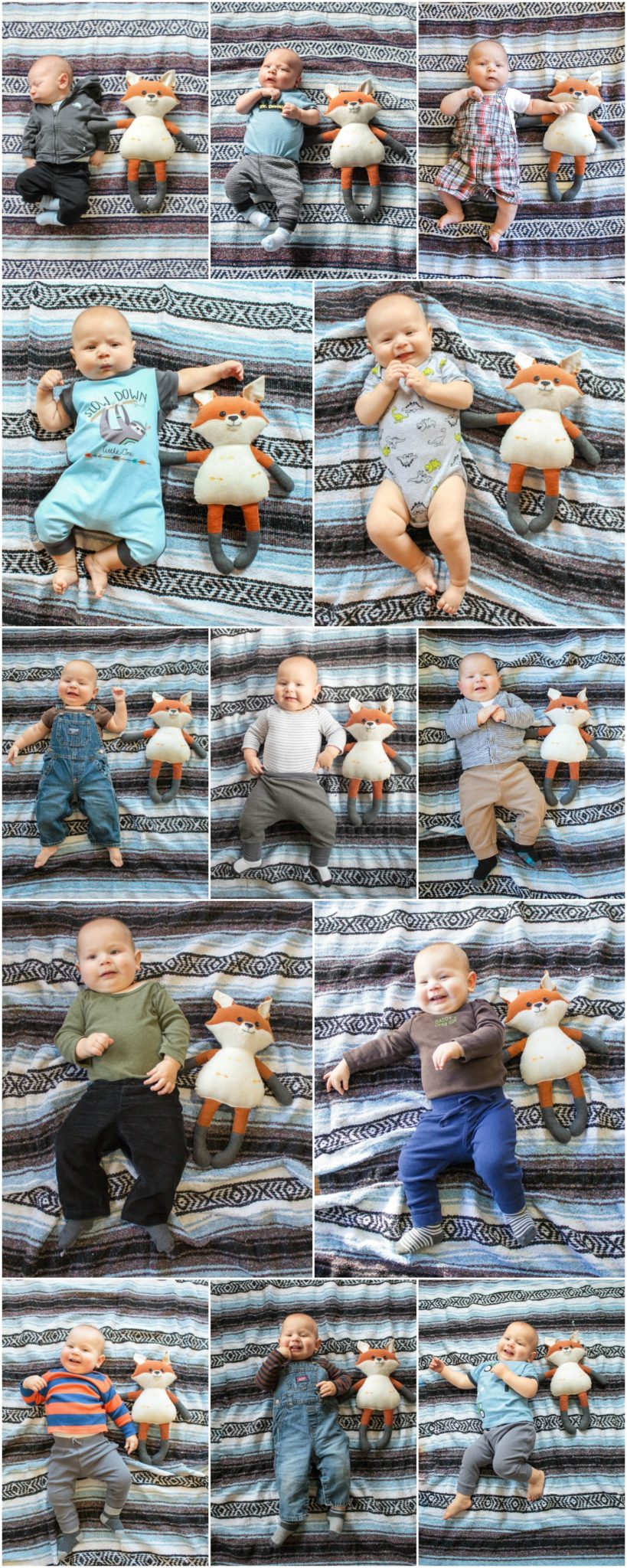 The most precious way to watch a baby grow. Monthly baby photos!