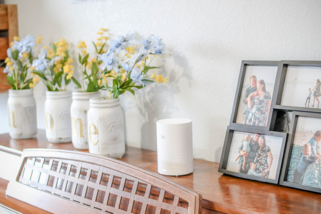 Find out how to store, organize, and share digital photos