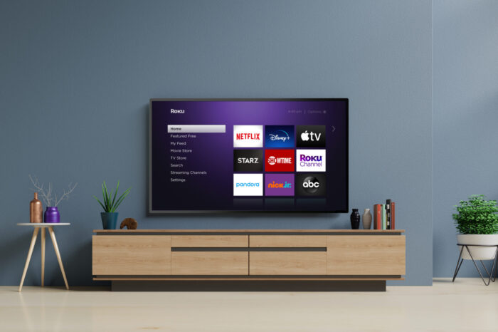How To Make You Roku Stop Talking