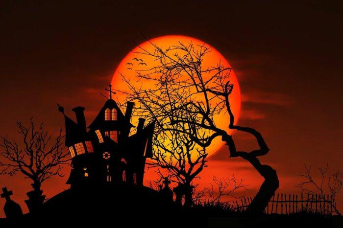 Stream Halloween Fun