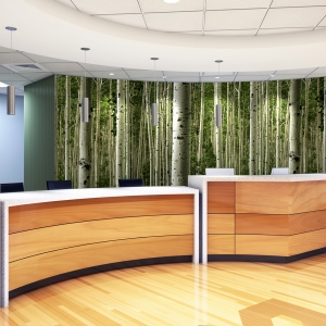 HOSPITAL-RECEPTION_FOREST-MURAL-300x300