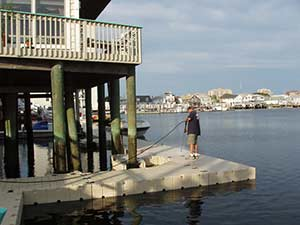EZ Dock Innovations - power washing - annual dock services