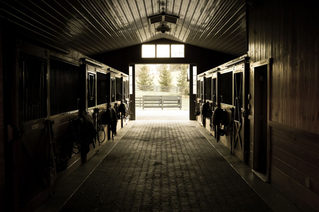 hidden hills horse farm stables