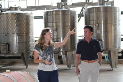 quintay-winery-visit