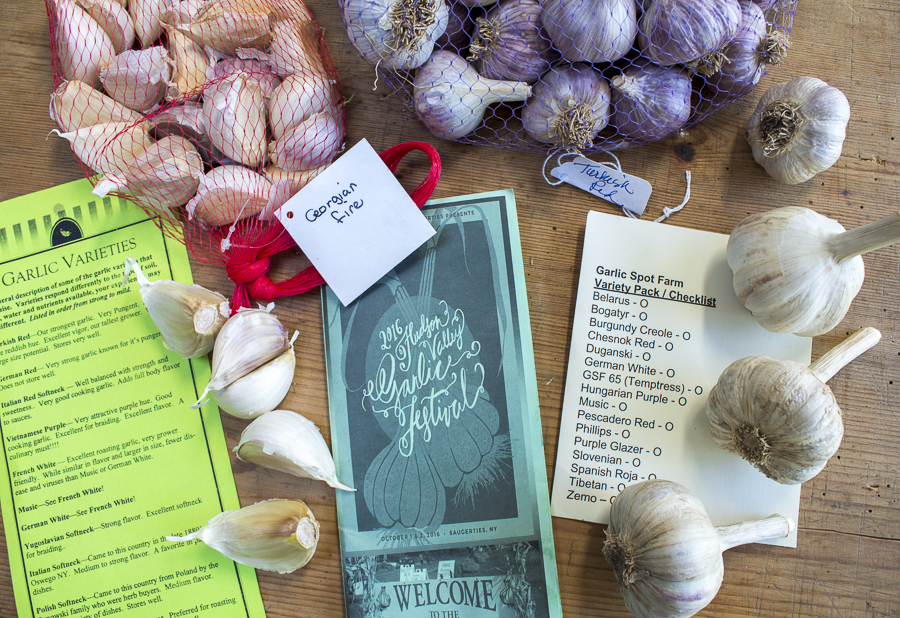 I had a wonderful time at the 2016 Hudson Valley Garlic Festival!