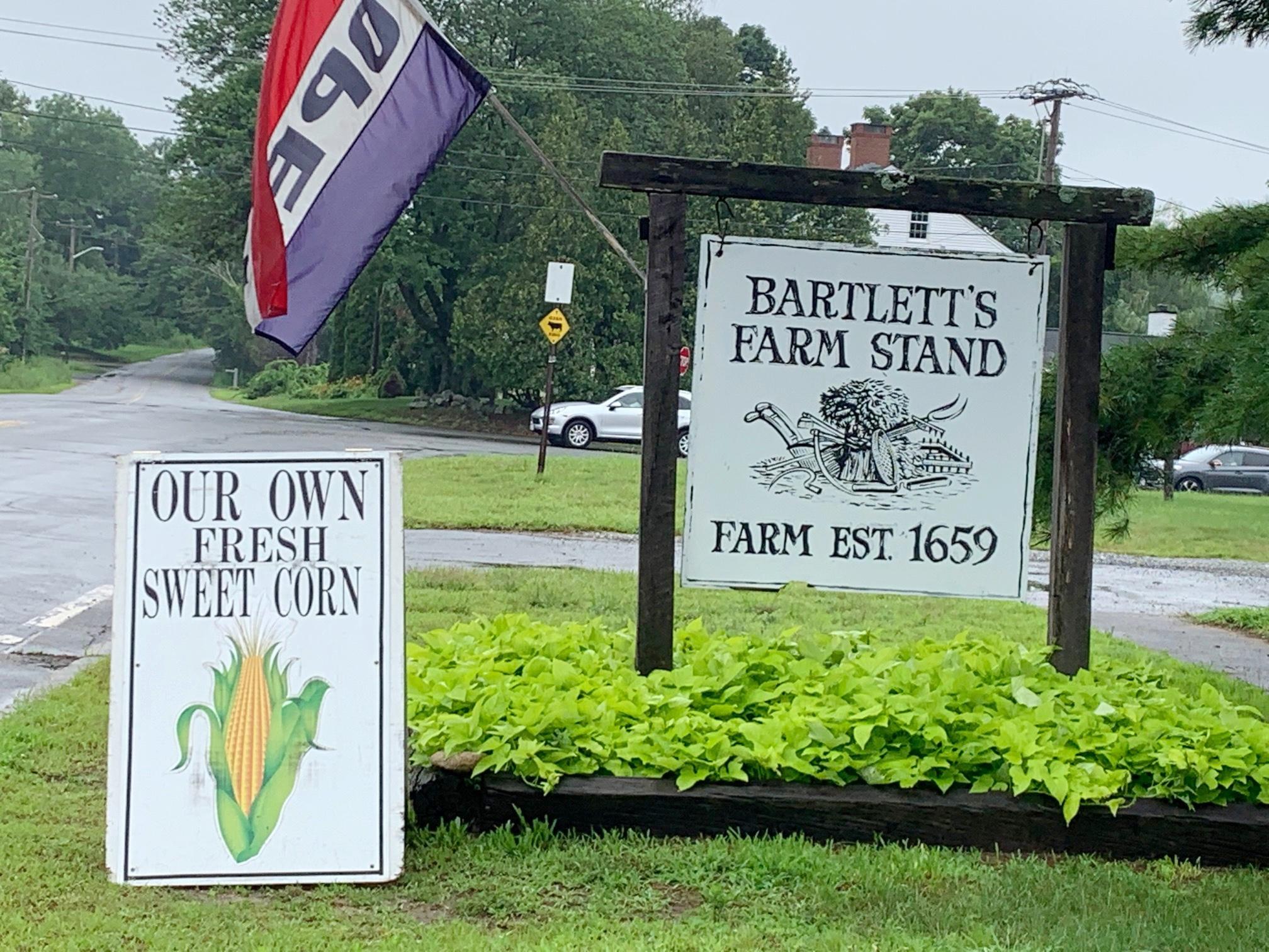 Butter & Sugar Corn from Bartlett Farm, Salisbury MA