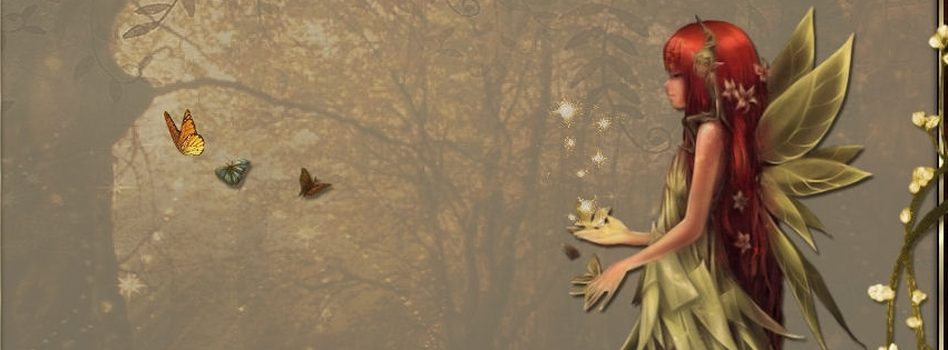 Fairy Facebook Covers